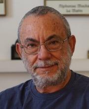 David Avnir